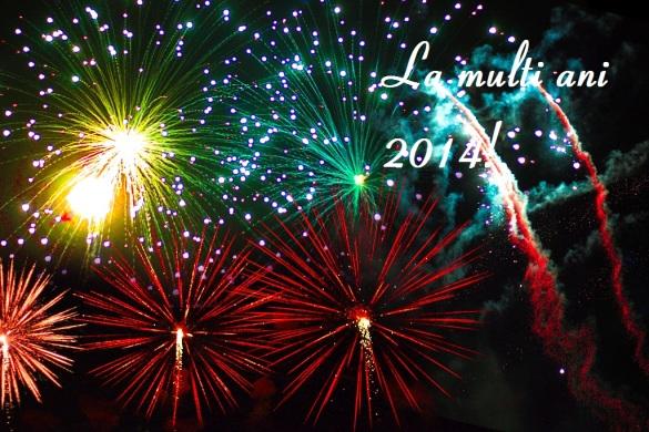 2014-anul-nou